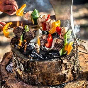 burnie instant grill holz nachhaltig